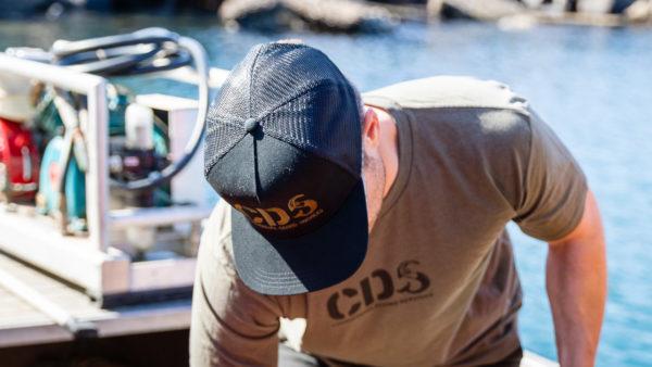 Cap Cds Black Top
