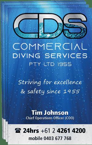 Tim Johnson Business Card Cds